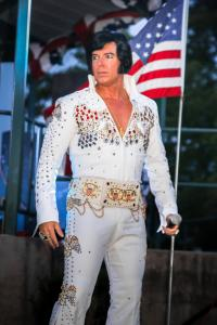 Elvis loves America